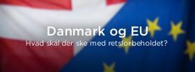 EU-nej: STATUS FØR EN VALGKAMP SLUTTER